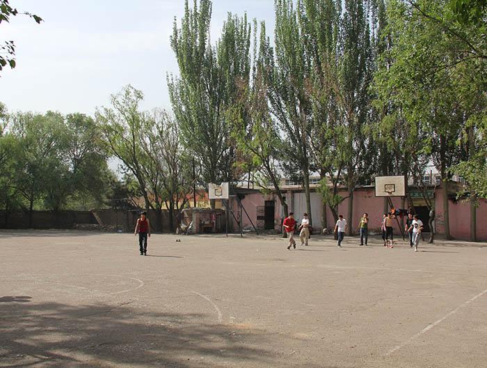 于青海大学位于西宁市南川西路158号资产 -青海省产权交易市场图片